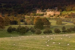 Chatsworth House and Stand Wood