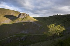 Hawthorn and Peter's Stone, Cressbrook Dale