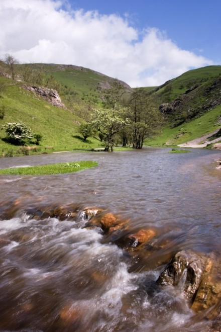 Flooded River Dove, Dovedale