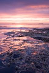 Harkess Rocks at sunrise, Bamburgh