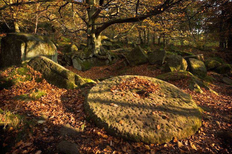 """photo workshop padley gorge"