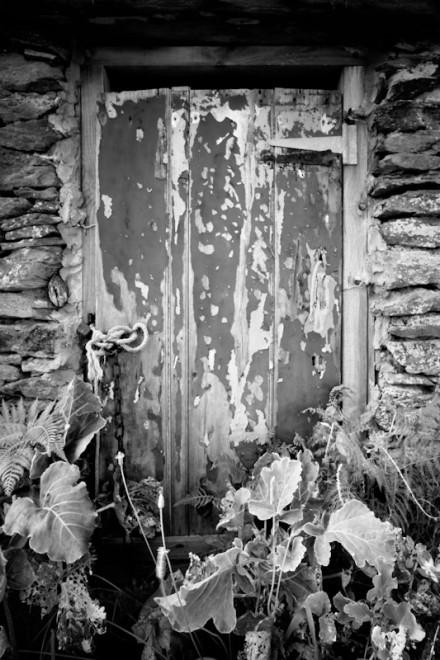 Peeling door, Prussia Cove