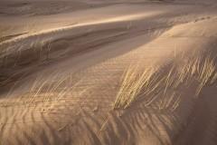 Rippled light, The Sands of Forvie